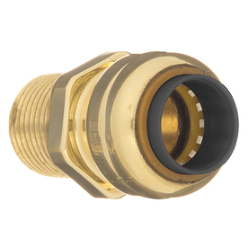 Blue Hawk 3/4-in dia Male Adapter Push Fitting